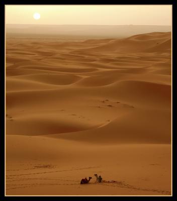 ¡¡Qué soledad!!